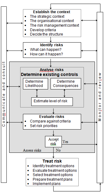 Risk Process Diagram