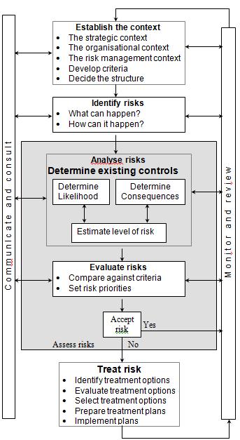 Risk Process Diagram